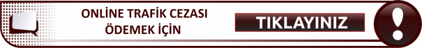 ONLİNE TRAFİK CEZASI