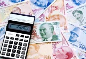 Vergi Cezası Hesaplama