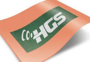 HGS Cezası